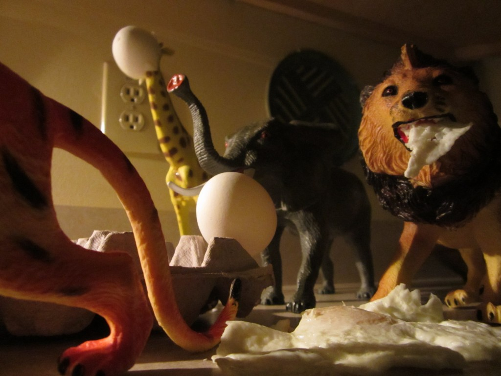 The toys came alive at midnight last niight!