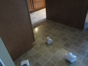 I followed the rolls of toilet paper into the kitchen.