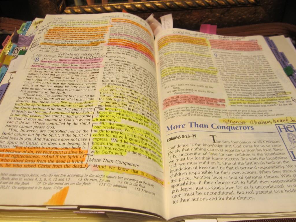 Heidi Lee's Bible