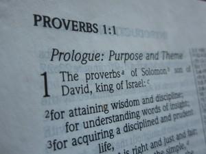proverbs 041